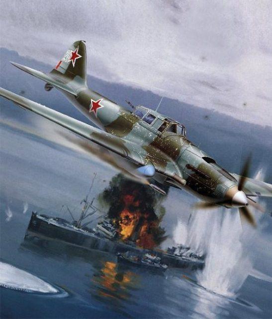 IL-2 de S. Tsvetkov